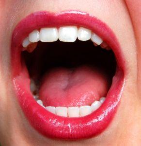 mouth-837375-m